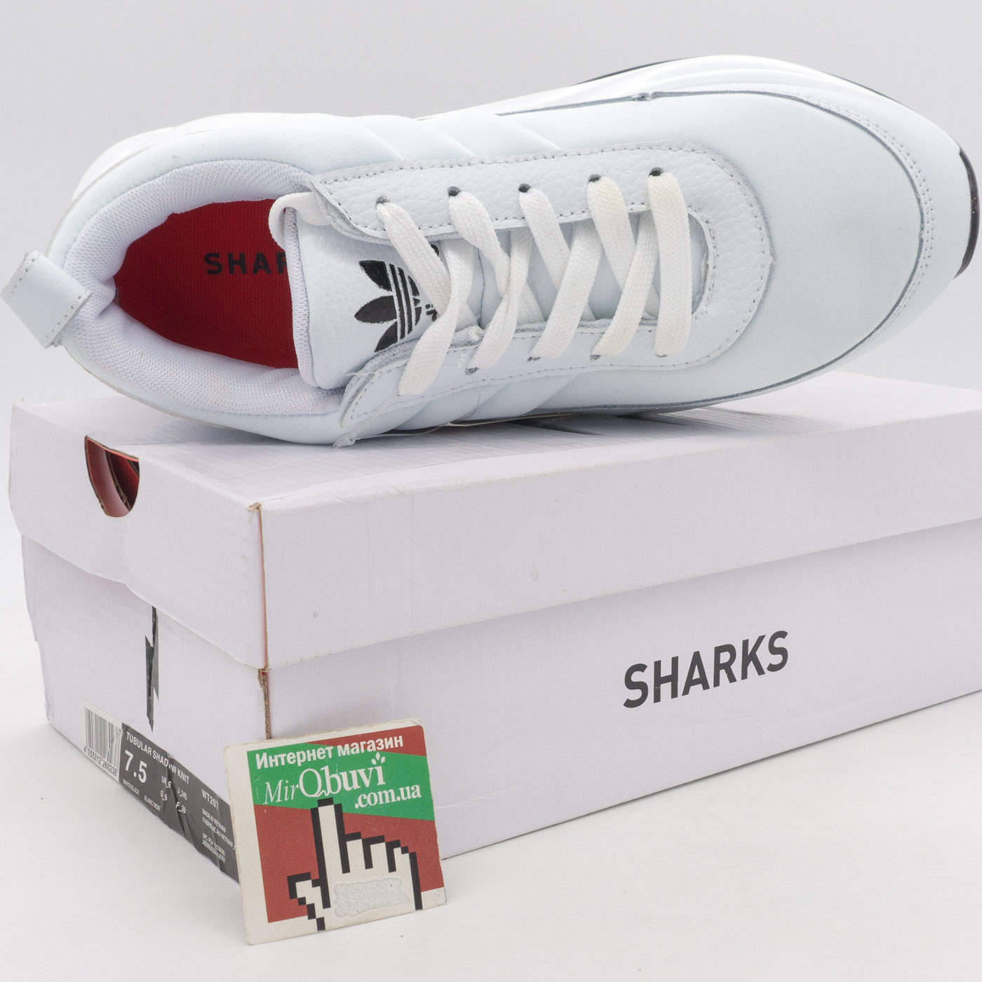 фото back Женские кроссовки Adidas Sharks белые. back